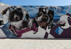 Graffiti / Street Art (paramonguino) Tags: p1120982jpg1 200816 tenerife islascanarias canaryislands kanarischeinseln graffiti streetart