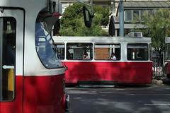 Vienna impression (g e r a r d v o n k ) Tags: artcityart art canon city colour expression eos europe flickrsbest fantastic flickraward lifestyle land ngc newacademy outdoor oostenrijk austria photos reflection red stad street summer this travel unlimited uit urban vehicle whereisthis where windows transport tram yabbadabbadoo