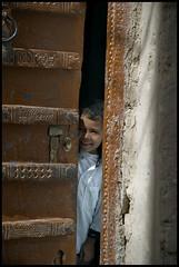 DSC_6604 (Sgaffo) Tags: yemen travelling 20072008 socotra