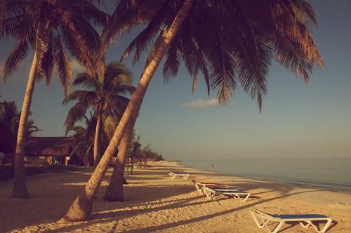Beach Cayo Levisa