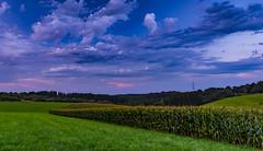 Colors of sky (Paul Bemert) Tags: 7ii landscape sony clouds wolken wald bemert summer deutschland sonyalpha7ii himmel paul nrw alpha ilce7m2 germany sonnenuntergang forest sky dark