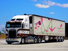 photo by secret squirrel (secret squirrel6) Tags: craigjohnsontruckphotos kenworth cabover coe aerodyne dandenong truckstop resting clean kreskastransport kruegertrailer taughtliner sparkle