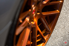 BMW 650i Gran Coupe - Vossen Forged Precision Series VPS-308 Wheels -  Vossen Wheels 2016 - 1016 (VossenWheels) Tags: 650i aftermarket ambertone bmw bmw6seriesforgedwheels bmw6seriesgrancoupe bmw6serieswheels bmw650i bmw650iforgedwheels bmw650iwheels bmwforgedaftermarketwheels bmwforgedwheels bmwgrancoupe bmwgrancoupewheels bmwm6 bmwm6aftermarketforgedwheels bmwm6aftermarketwheels bmwm6forgedwheels bmwm6wheels engineeredart forged forgedwheels graffiti grancoupe loweredbmw650i loweredbmwgrancoupe loweredbmwm6 m6 madeinmiami miami precision precisionseries vps vps308 vossen vossenbmw6series vossenbmwgrancoupe vossenbmwm6 vossenforged vossenforgedbmw6series vossenprecisionseries vossenvps vossenvps308 wynwood lowered
