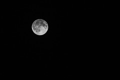 85/100x - Harvest Moon (Nomis.) Tags: canon eos 700d t5i rebel canon700d canoneos700d rebelt5i canonrebelt5i monochrome mono bw blackandwhite 100x 100xthe2016edition 100x2016 image85100 sk201609160661raweditlr sk201609160661 raw lightroom moon lunar luna harvest harvestmoon fullmoon full nightsky night sky skies darkness black bright satellite astronomy astrophotography september 2016 september2016