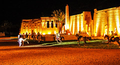 the show goes on (werner boehm *) Tags: wernerboehm alfleilawaleila touristshow egypt architecture horseriding