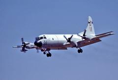 7881 (dannytanner804) Tags: australiaairforce aircraftlockheed p3b orion reg a9293 93 cn 185b5403 edinburgh raaf base adelaide sa australia airportcodeyped date2731980