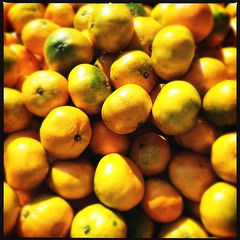 vitamin C #tangerine #fruit #vitC (.  .) Tags: fruits tangerine phonecam square squareformat iphoneography instagramapp uploaded:by=instagram iphone4s yunnan2012