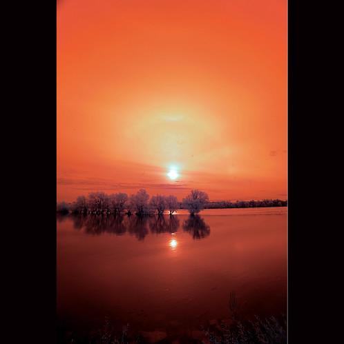 2012 11 11 Red Rhein River in Infrared