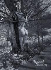 Venus of the tree (Rich Saunders) Tags: winter blackandwhite sculpture snow cold tree monochrome statue photoshop bark trunk richardsaunders richardsaunderssurrealist