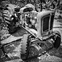 Paphos (big andrei) Tags: bw tractor abandoned grain cyprus olympus zuiko 43 e5 paphos 1260mm nuffielduniversal