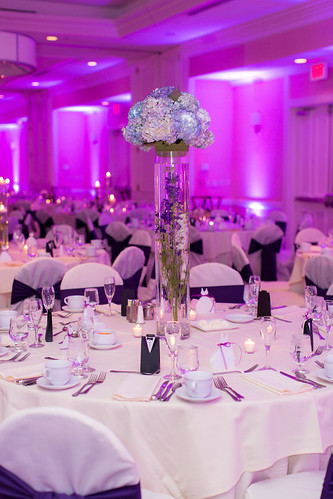 """Reception © Emily Crall Photography-120 • <a style=""""font-size:0.8em;"""" href=""""http://www.flickr.com/photos/81396050@N06/8183299036/"""" target=""""_blank"""">View on Flickr</a>"""