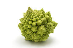 4-Hour Chef Gallery (timferriss) Tags: light stilllife food flower macro green cooking cutout italian roman broccoli vegetable whitebackground cauliflower fractal studioshot edible colar isolated romanesco inflorescence broccoflower logarithmicspiral brassicaoleracea broccolo