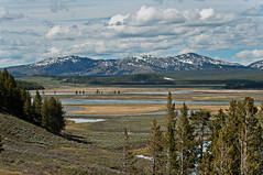 promised land (nattybumppo*) Tags: mountains nature landscape yellowstone