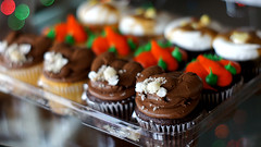 Thanksgiving cupcakes! (variolax) Tags: bokeh 365 project365