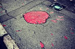 sarajevo rose (fatimka) Tags: red pavement sarajevo bosnia crater bomb bosna topu havan saraybosna oyuklar