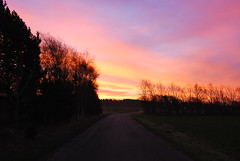 23/11.2012 - pink sunrise (julochka) Tags: pink winter sunrise denmark postcardtoblogcamp 366the2012edition givefotoprojekt