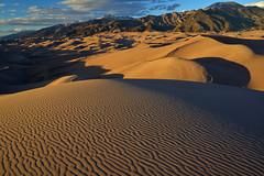 Golden dunes in the golden hour (Bill Bowman) Tags: sunset colorado greatsanddunesnationalpark sangredecristomountains crestonepeak goldendunes mountherard clevelandpeak