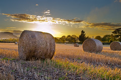 Bales (stumpyheaton) Tags: blue sunset sky field clouds nikon cheshire bales realmagic frodham d5100