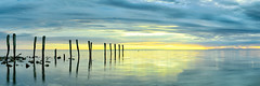 Heavens Zipper (Damien Seidel) Tags: old panorama sunlight seascape reflection broken clouds sunrise pier sticks jetty panoramic southaustralia sunray kangarooisland carlzeiss kingscote nikond800e damienseidel