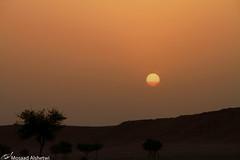 Sunrise optimism شروق التفاؤل (mosa3ad alshetwi) Tags: morning tree sunrise day optimism يوم نهار شروق صباح شجر الشروق حياة تفاؤل