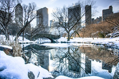 A Manhattan Christmas2 (stocks photography) Tags: winter snow newyork centralpark manhattan stocks christmasinthepark anenglishmaninnewyork snowinthepark anewyorkchristmas christmasinmanhattan stocksphotography michaelmarsh amanhattanchristmas
