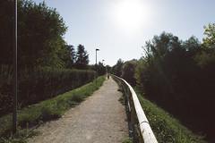 Green (ikhals) Tags: summer italy sun green nature vanishingpoint nikon italia path bluesky monferrato d40 casalemonferrato nikond40 vsco vscofilm