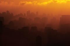 São Paulo (*Ολύμπιος*) Tags: sunset orange night tramonto cloudy laranja pôrdosol ibirapuera layers arancione coucherdusoleil parquedoibirapuera ibirapuerapark