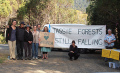 Derwent Valley residents support Miranda (observertree) Tags: derwentvalley talltree tasmanianforests internationaldayofaction observertree forestdefence observertreeoneyear