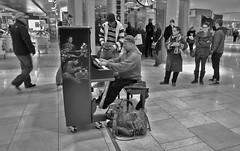 Working Class Virtuoso (Sherlock77 (James)) Tags: people musician man calgary downtown crowd piano streetphotography shoppingcentre