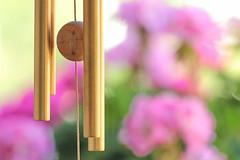 Wind-chimes at home (zinnia2012) Tags: windchimes balcony geranium carillon balcon
