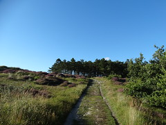Nature - Landscape (Rahmi Asiruh) Tags: sandhill dunes trees tree bluesy sky love sweet awesome best nature landscape spring summer peyzaj paesaggio passage landschaft thebestpicturegallery sony dschx300 cybershop outdoor plant woods wood beautiful colors color forest salvaje rbol naturalize natur doa aa baum bomen wild natuur roman lonely viewpoint cloudy clouds sunset conifer pine