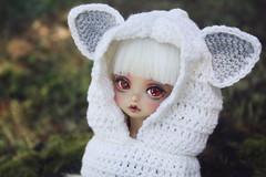 kotori-pet-1 (babychan80) Tags: kotori bjd yosd peakswood tanskin whitefox crochet hat