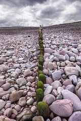 Bossington Groynes 03 (Photograferry) Tags: exmoor nationalpark uk southwest england outside nopeople landscape nature 2016 bossington beach pebbles groynes wooden posts old