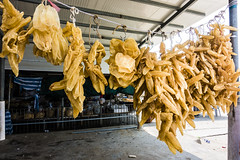 dried fish maw (Kai-Ming :-))) Tags: kaiming kmwhk hongkong dried fish maw lau fau shan laufaushan sony dscrx100m4 food driedfood fishmaw bladder