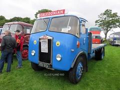 Albion Chieftain, Holmalloy cab. (Leyland 600) Tags: albion holmalloy caledonian