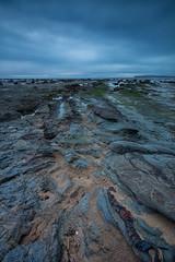 Long Reef Sunrise 13 (RoosterMan64) Tags: australia longexposure longreef nsw northernbeaches rockshelf seascape