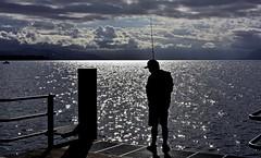 Le pêcheur d'étoiles (Diegojack) Tags: nikon nikonpassion d7200 morges scènedevie contrejour débarcadère pêcheurs lumière étoiles