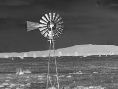 HWW - Inverted (Douglas H Wood) Tags: windmill kaibab nationalforrest coconino county arizona garlandprairie hww blackwhite inverted