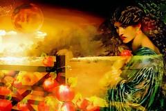 Shadows of the Harvest Moon (abstractartangel77) Tags: harvest moon gate apples