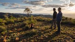 evening and spinifex (liam.jon_d) Tags: australia australian australiannationalpark billdoyle dutchmans dutchmansstern dutchmanssternconservationpark flinders flindersranges hike hiking landscape lookout mountain nationalpark overlook peak range sa southaustralia southaustralian sunset theflinders track trail view walk