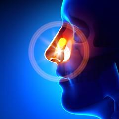 Sinus (stylesatlife) Tags: sinus symptoms and causes