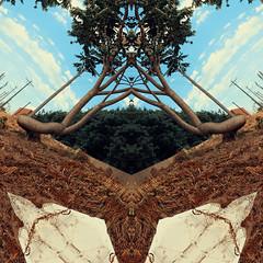 FacesRecursion (ArminAreMean) Tags: faces demon tree nature landscape psychadelic abstract