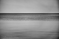 Lake Balaton (tamstth) Tags: balaton balatonkenese lake europe hungary bw blackandwhite blackandwhitephotos black white water justbw canon 6d natural nature outdoor chill relax trip travel monochrome