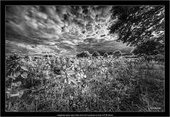 Voigtlander Heliar-Hyper Wide 10mm f/5.6 Aspherical on Sony A7R IR(720nm) (Dierk Topp) Tags: a7rir bw voigtlanderheliarhyperwide10mmf56aspherical infrared sw sony superwide ultrawideangle wideangle