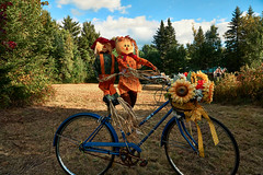 ridersDSC05636 (alans1948) Tags: halloween bicycle sony a6000 18105 september 2016