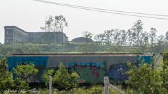 _DSC5992 (Mario C Bucci) Tags: saida fotografia pacheco paulo tellis mario bucci hugo shiraga fabio sideny roland grafites volu ii