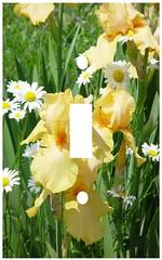 yellow iris and daisies single switchplate (Charlotte Clarke Geier) Tags: computer print crafts digitalart computercrafts