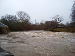 Pollock Park weir drowned out (adm cro) Tags: whitecartwater spate highflow