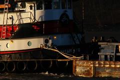 Out Of The Light Into The Shadows (thetrick113) Tags: tugboat hudsonriver tug hudsonvalley captaind putnamcountynewyork coldspringnewyork norfolktugcompany hudsonrivertugboat tugboatcaptaind captaindnorfolktugcompany