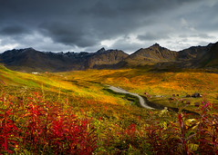 Another day in paradise (Ania.Photography- busy) Tags: hatcherpass talkeetna alaska valley curvyroad light field nature landscape majestic tranquilscene traveldestinations panoramic genericlocation sky cloud day alaskausastate scenics grass snowcapped remote photography talkeetnamountains color tundra flowers mountains beautiful fall autumn abigfave